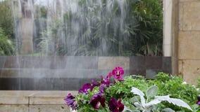 Waterfall in Dallas Arboretum stock footage
