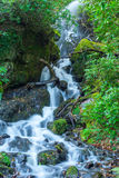 Waterfall Dartmoor National Park England Royalty Free Stock Photography