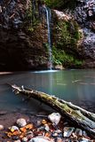 Waterfall with dead log in the foreground royalty free stock photography
