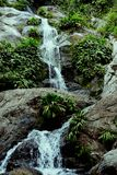 Waterfall deep in the amazonian rainforest with lush vegetation stock image