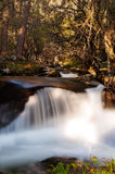 Waterfall in deep forest. Bathed in the soft light of sunset on a beautiful spring day Royalty Free Stock Photo