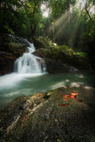 Waterfall. Deep forest waterfall at Chet khot waterfall ,Thailand royalty free stock images