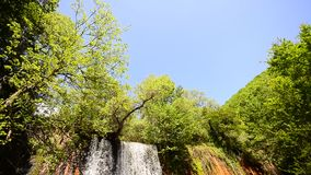 Waterfall in deep forest stock video footage