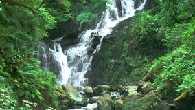Waterfall in deep forest footage Royalty Free Stock Photo