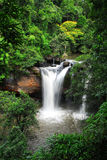 Waterfall in deep forest of Kaoyai,Thailand Royalty Free Stock Images