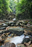 Waterfall in  deep forest on mountain Stock Photos