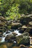 Waterfall in  deep forest on mountain Royalty Free Stock Photography