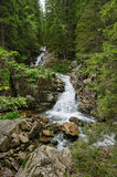 Waterfall in deep forest at mountains Royalty Free Stock Photography