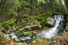 Waterfall in deep forest at mountains Stock Images