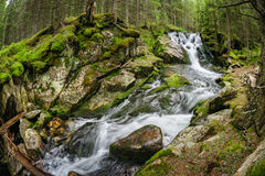 Waterfall in deep forest at mountains Royalty Free Stock Photo