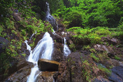 Waterfall in deep forest Royalty Free Stock Photo