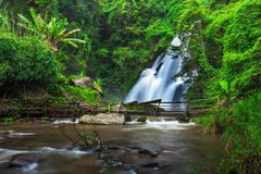 Waterfall in the deep forest royalty free stock photo