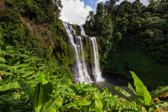 Waterfall in deep forest at Pakse Laos Stock Image