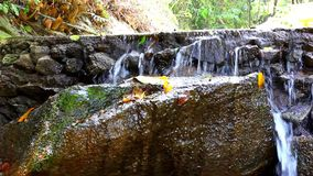 Waterfall in deep forest on Samui, Thailand. Video stock footage
