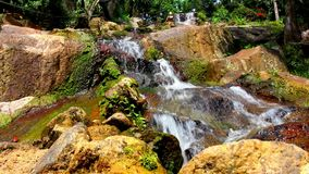Waterfall in deep forest on Samui, Thailand. Video Royalty Free Stock Photo