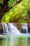 Waterfall deep forest soft scenic natural Royalty Free Stock Images