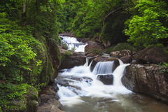 Waterfall in deep forest Stock Photos