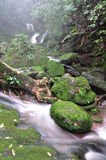 Waterfall in deep forest Stock Image