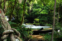 Waterfall in deep forest, Thailand Royalty Free Stock Photo