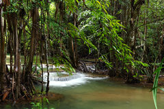 Waterfall in deep forest, Thailand Stock Image
