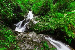 Waterfall in deep forest of Thailand Stock Image
