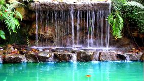 Waterfall in deep forest of Thailand. Video Stock Photo