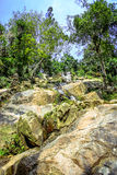 Waterfall in deep green jungle. Koh Samui Stock Photos