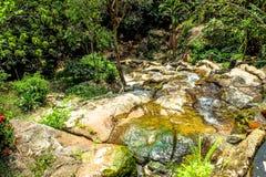 Waterfall in deep green jungle. Koh Samui Stock Image