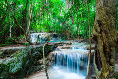 Waterfall in deep jungle Royalty Free Stock Photo