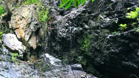 Waterfall in deep jungle forest on Koh Samui. HD. Waterfall in deep jungle forest on Koh Samui, Thailand. HD. 1920x1080 stock video