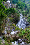 Waterfall in deep rain forest jungle Royalty Free Stock Image