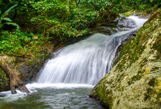 Waterfall in deep rain forest jungle Royalty Free Stock Photo