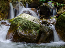 Waterfall in deep rain forest jungle Stock Photography