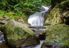Waterfall in deep rain forest jungle Stock Photo