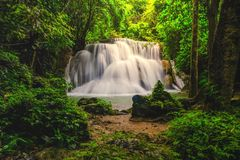 Waterfall in deep rain forest jungle Huay Mae Kamin Waterfall i stock image