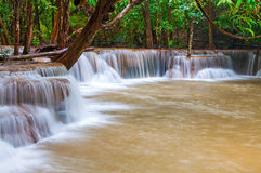 Waterfall in deep rain forest jungle (Huay Mae Kamin Waterfall i Stock Images