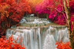 Waterfall in deep rain forest jungle (Huay Mae Kamin Waterfall i Stock Photos