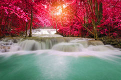 Waterfall in deep rain forest jungle (Huay Mae Kamin Waterfall i Stock Image