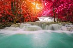 Waterfall in deep rain forest jungle (Huay Mae Kamin Waterfall i Stock Photography