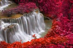 Waterfall in deep rain forest jungle (Huay Mae Kamin Waterfall) Stock Images