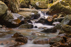 Waterfall in deep rain forest jungle Royalty Free Stock Photos