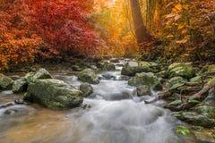Waterfall in deep rain forest jungle (Krok E Dok Waterfall Sarab Royalty Free Stock Photos