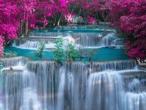 Waterfall in deep rain forest jungle with Purple leave - Huay Mae Kamin Waterfall in Kanchanaburi Province, Thailand stock photo