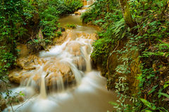 Waterfall in deep rain forest Royalty Free Stock Images