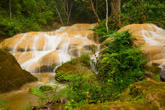 Waterfall in deep rain forest Royalty Free Stock Image