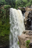 Waterfall deep in the tropical rain forest of Ubud, tropical Bali island, Indonesia. Exotic scene of tropics. Stock Image