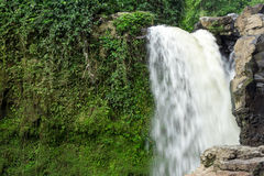 Waterfall deep in the tropical rain forest of Ubud, tropical Bali island, Indonesia. Exotic scene of tropics. Stock Photos
