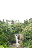 Waterfall deep in the tropical rain forest of Ubud, tropical Bali island, Indonesia. Exotic scene of tropics. Stock Photo
