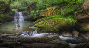 Waterfall at Dinas Rock Stock Photography
