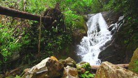 Waterfall at Doi Inthanon, Chiang Mai, Thailand stock video